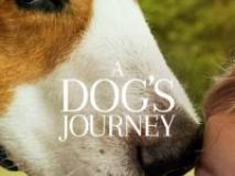 Dostumun Yolculuğu – A Dogs Journey 2019 1080p Türkçe Altyazı izle